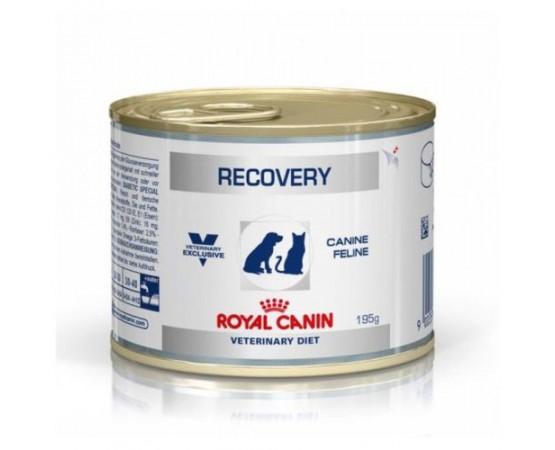 -Contenido energético adaptado para facilitar el manejo nutricional del perro y del gato durante un período crítico. -Su textu